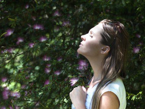 stiinta respiratiei